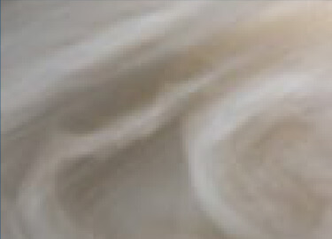 Wispering Winds